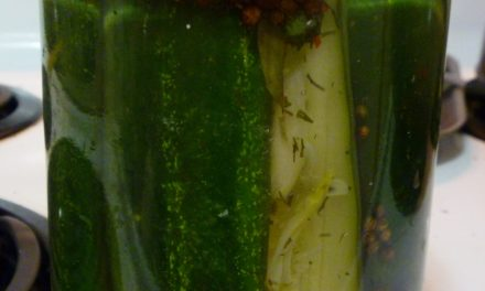This Week's Experiment: Pickles