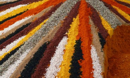 Spicing up your Cuisine: Exploring the World of Spices