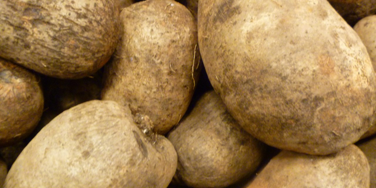 Sweet Potato or Yam: Which One Do You Eat?