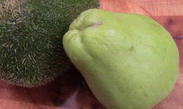 The Earthy Goodness of Chayote