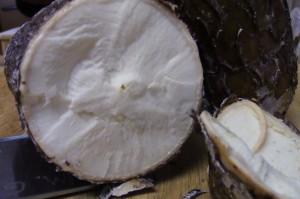 cut cassava