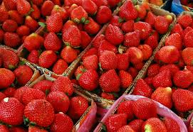 May is the Month of Strawberries