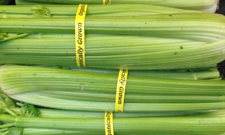 Don't Overlook Celery