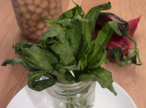 The Mexican Herb Epazote, used in cooking beans, and to add flavor to vegetables and soups.