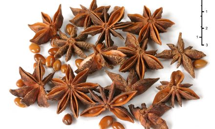Following the Spice: Star Anise