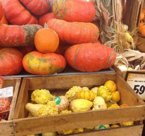 festival pumpkins;