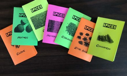 All you need is a Spice Zine!