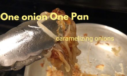 One Onion One Pan